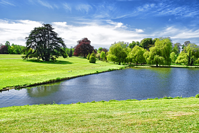 Discover London Tours - Canterbury Cathedral & Leeds Castle tour from London