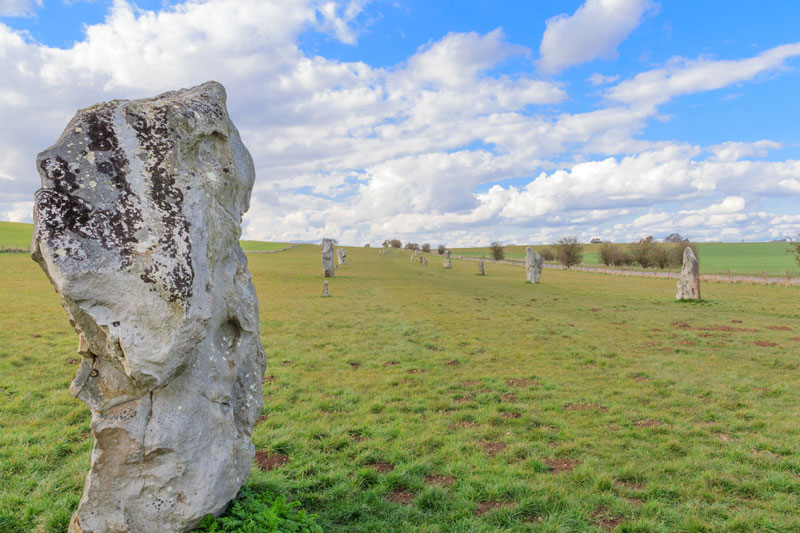 Discover London Tours - Archaeology tour of Wessex